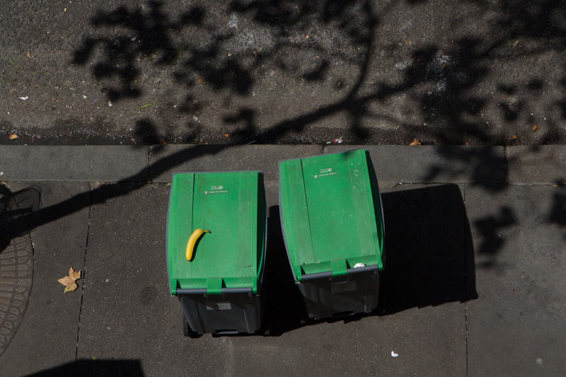 banana-on-bin