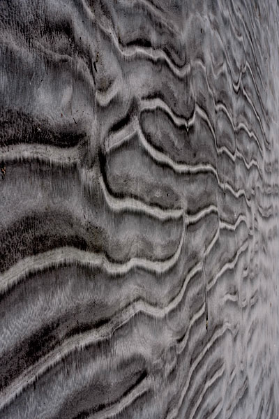 sand-patterns-nz