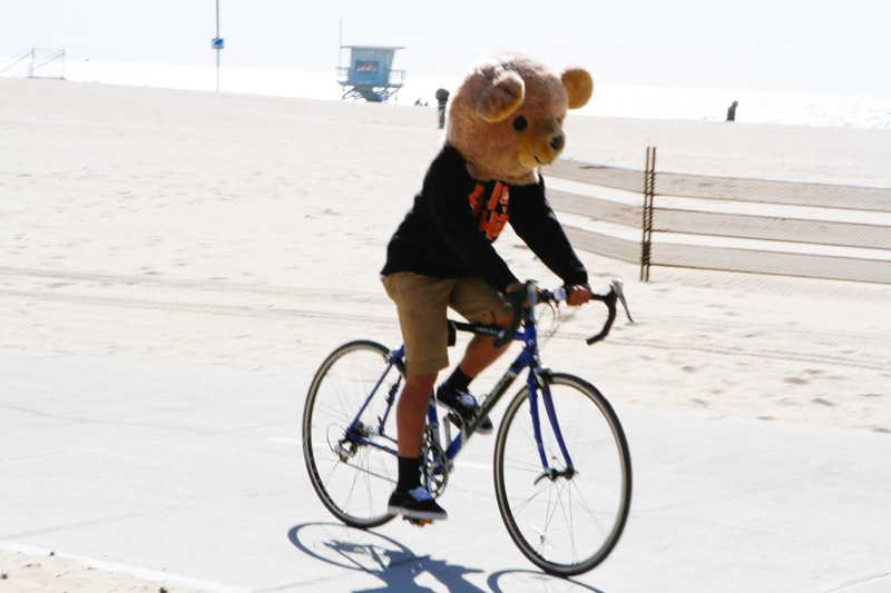 venich-beach-bikes