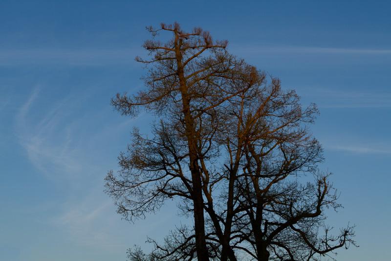 hampstead-sky