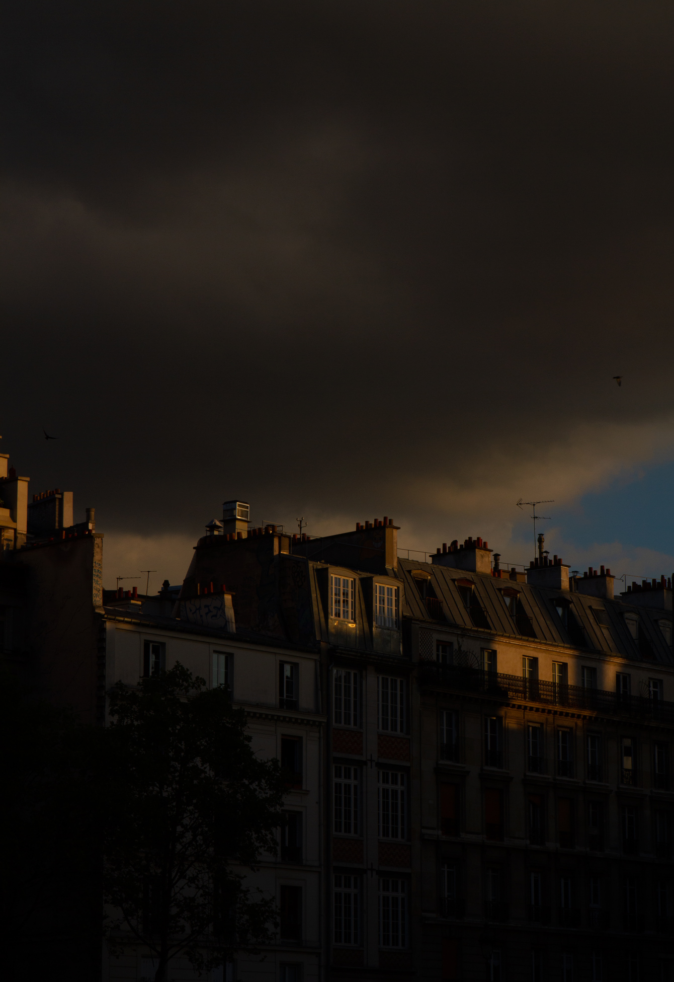 paris-golden-light