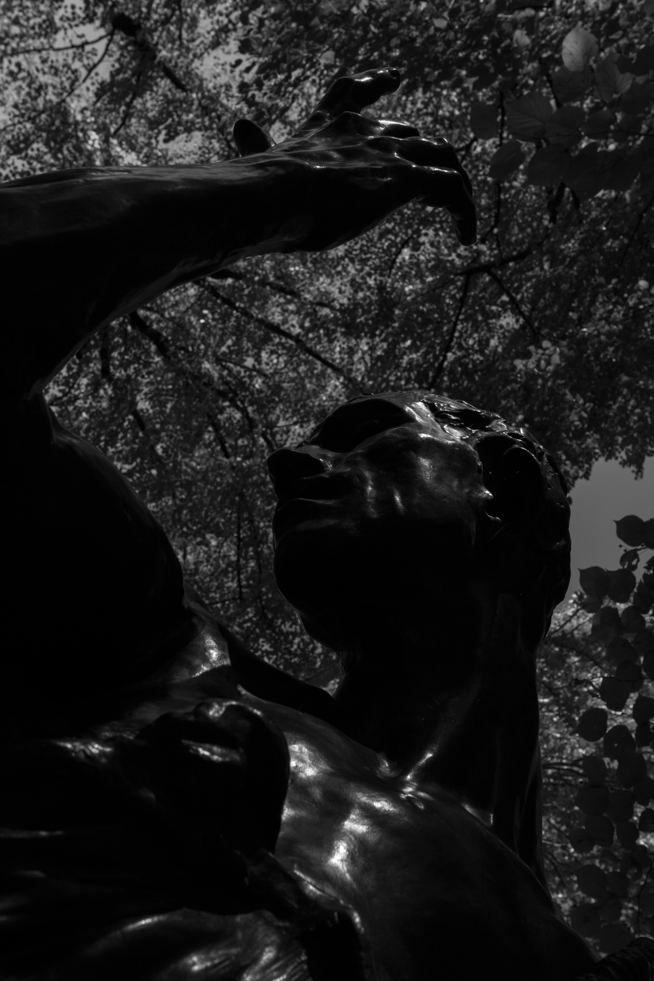 rodin-musee-garden-1