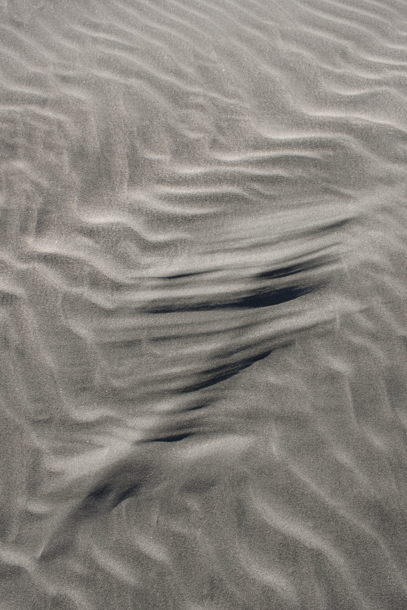 sand-wind-black-nz