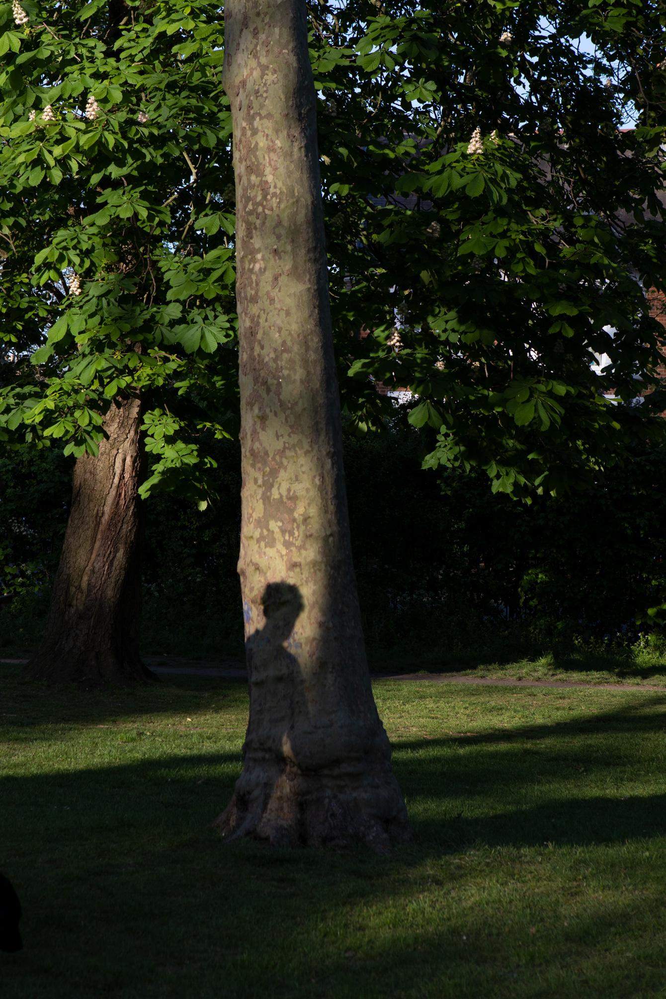 west-london-queens-park-2